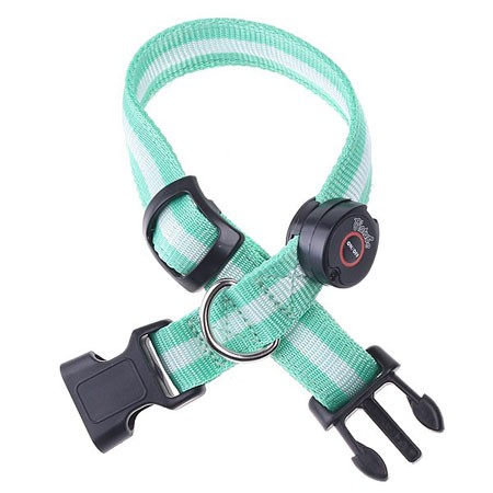 Nylon LED Dog Pet Flashing Light Up Safety Collar Green