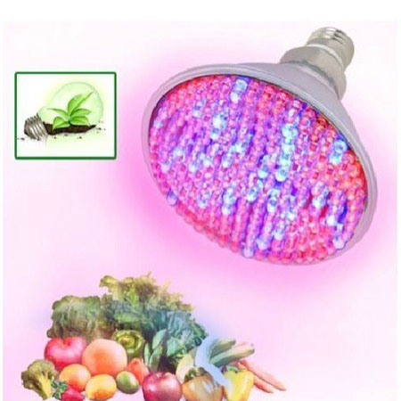 168 Red Blue LED ORCHID GROW LIGHT 220V 98W