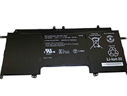 replace VGP-BPS41 battery